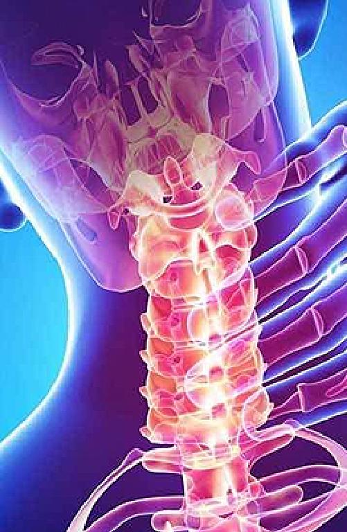Sparsh-Banner_Rheumatology-Mobile1.png