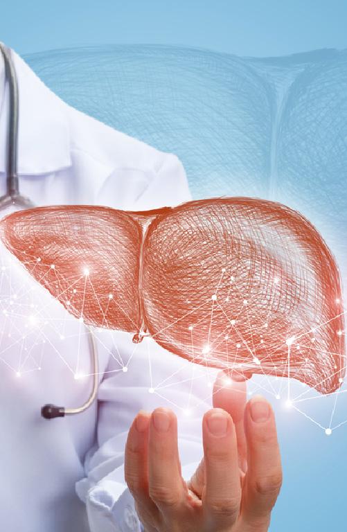 Liver Transplant & Hepato-Pancreato-Biliary Surgeries