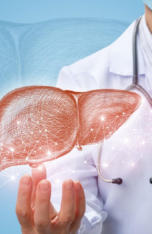 Sub-speciality_--_Liver_Transplant_Mobile.jpg