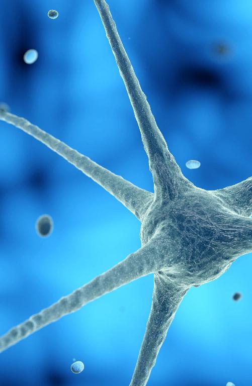 Sub-speciality_--_Neurology_Mobile.jpg